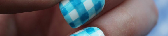 Blue Gingham and Roses Nail