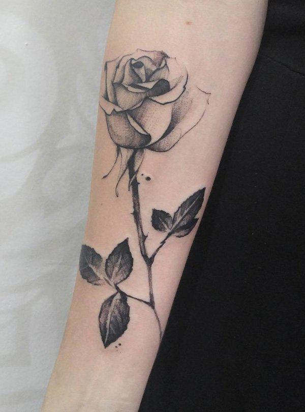 Illustration black rose tattoo