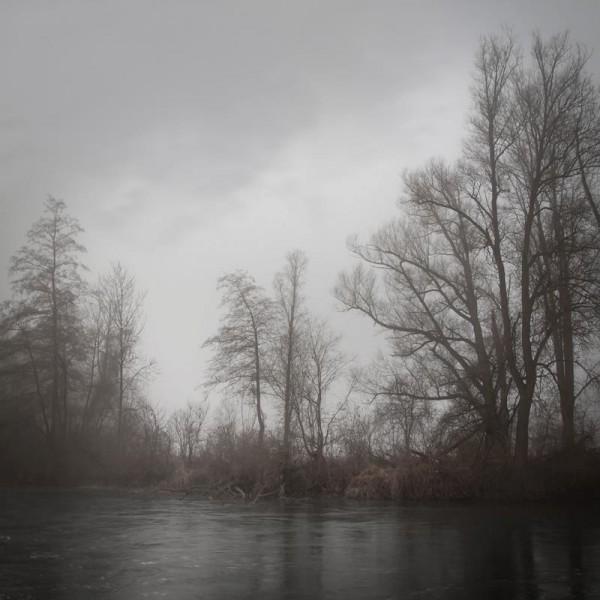 Харьзба в лесу 8 фотография