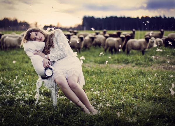 Lost count whilst counting sheep? Insomnia.