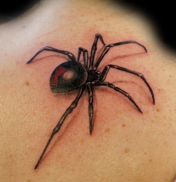 spider web tattoo drawings