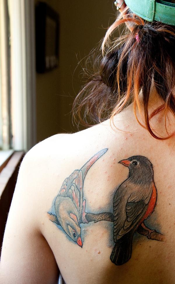 bird wallpapers com