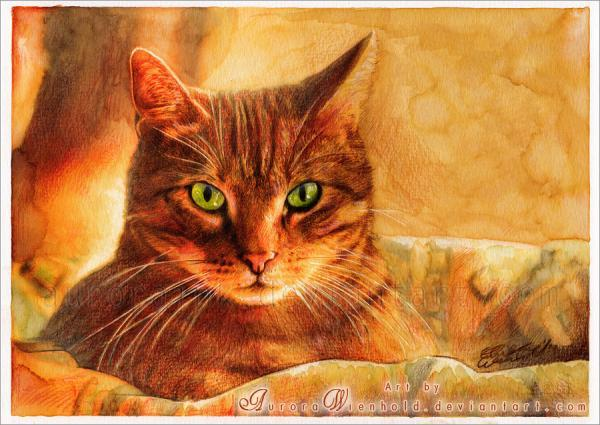 "Buscando "" Pinturas "" -http://www.cuded.com/wp-content/uploads/2013/09/cat_at_sunset_by_aurorawienhold600_4251.jpg"