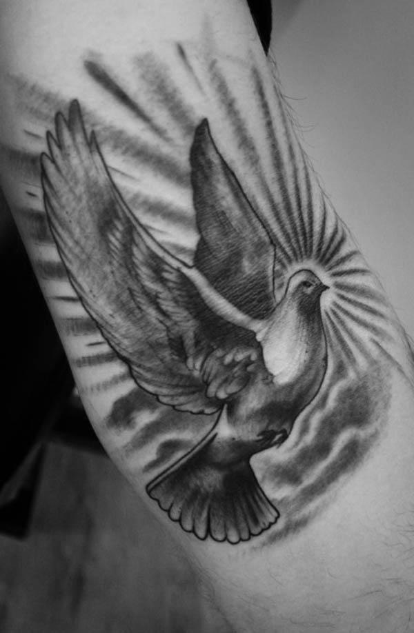 white dove symbol holy spirit