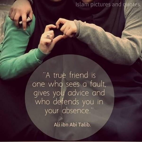 A true friend is one who sees a fault, gives you advice and who defends you in your absence