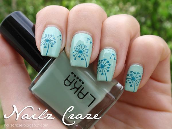 Dandelion Nailz Craze NC01 Stamping plate