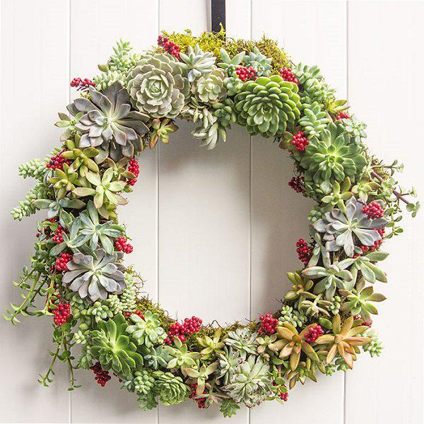 succulent-wreath-for-the-holidays