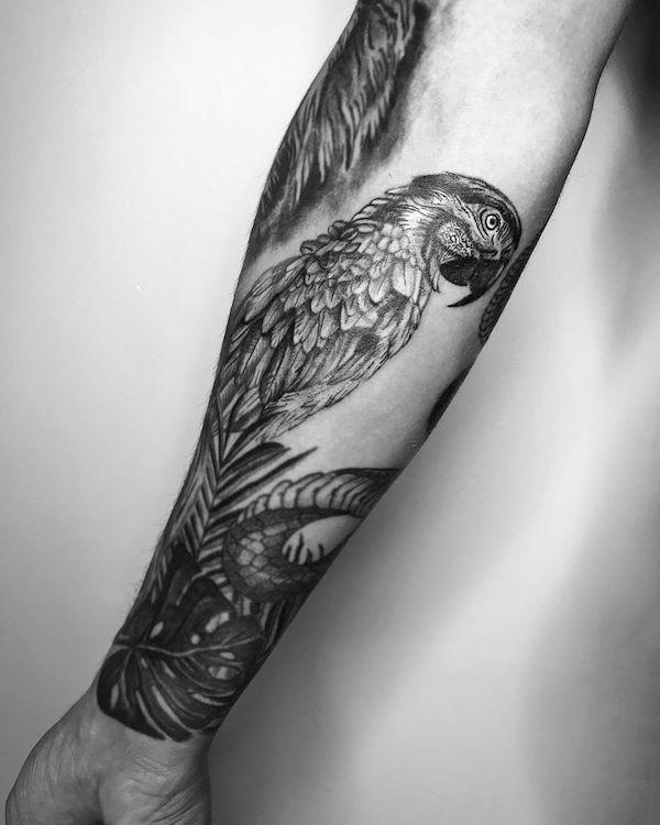parrot snake tattoo