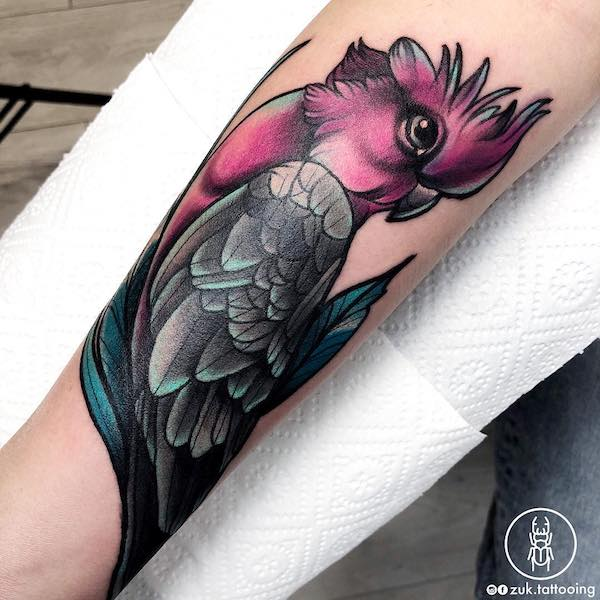 Parrot matching tattoos for couple