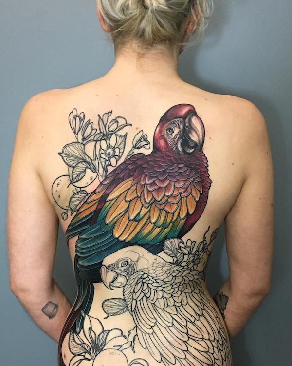 Macaw tattoo on the back