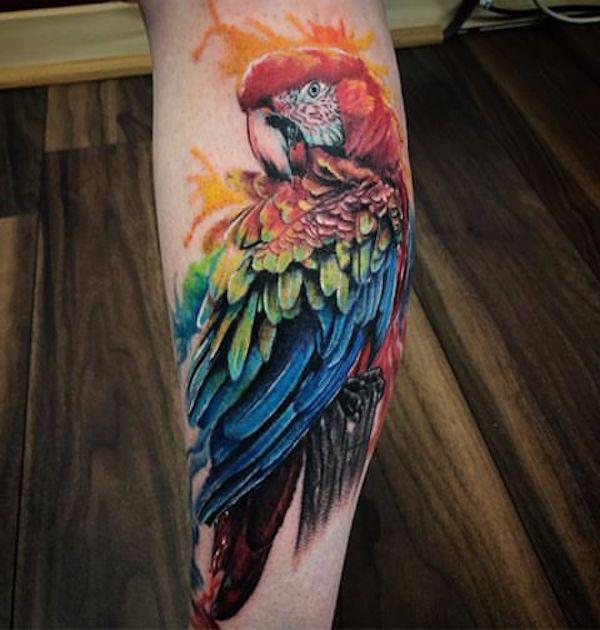 Colorful parrot tattoo